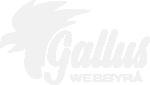 GAllus Webbyrå